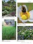 Ausgabe 2013 - Natürlich Gärtnern - Seite 4