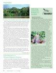 Ausgabe 2013 - Natürlich Gärtnern - Seite 5