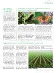 Ausgabe 2013 - Natürlich Gärtnern - Seite 6