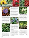 Ausgabe 2013 - Natürlich Gärtnern - Seite 7