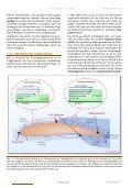2 Strömung am Tragflügel - airCademy - Seite 6
