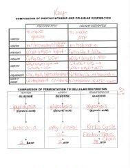 Practice Worksheets Key.pdf - Keller ISD Schools