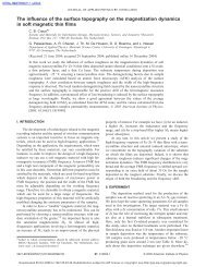 The influence of the surface topography on the magnetization ...