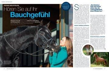 Pferde beurteilen – Hören Sie auf Ihr Bauchgefühl – Mein Pferd 7 ...
