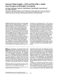89 - The Journal of Cell Biology - Rockefeller University Press