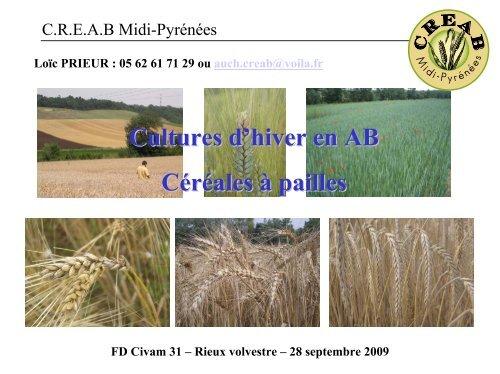 Le blé tendre d'hiver Généralités