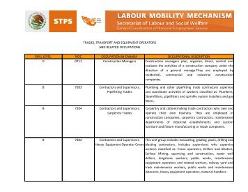 Trades, Transport and Equipment Operators and Related Occupations