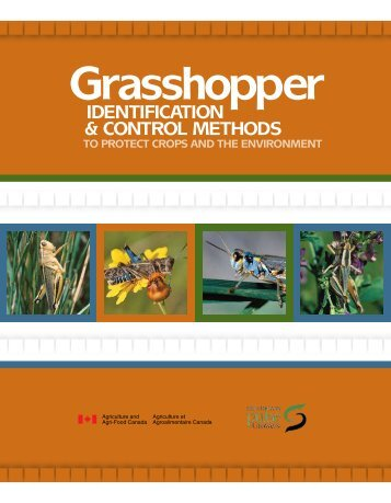 Grasshopper - Agriculture and Rural Development