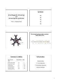 Grundläggande immunologi och immunologiska sjukdomar