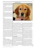 Doggy-Rapport nr 4-07.qxd - Page 3