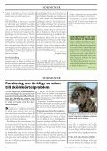 Doggy-Rapport nr 4-07.qxd - Page 4