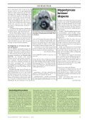 Doggy-Rapport nr 4-07.qxd - Page 5