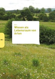 be3-der-leitfaden-natura-2000-naturawal.pdf