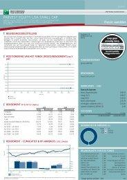 PARVEST EQUITY USA SMALL CAP - Classic Kapitalisatie