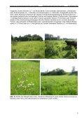 Wie beeinflusst die Grünlandbewirtschaftung das Nahrungsangebot ... - Seite 5