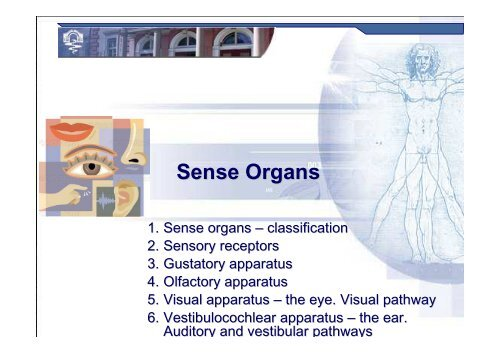 Sense Organs [download]