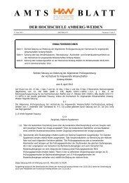 Amtsblatt Nr. 2 - Ostbayerische Technische Hochschule Amberg ...
