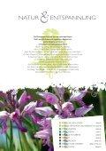 Download - Champagne-Ardenne - Seite 3