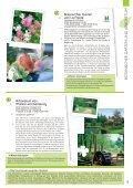 Download - Champagne-Ardenne - Seite 5