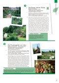 Download - Champagne-Ardenne - Seite 7
