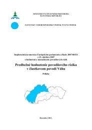 Predbežné hodnotenie povodňového rizika v čiastkovom povodí Váhu