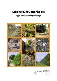 Tipps zur Anpflanzung und Pflege (PDF | 252,39 KB)