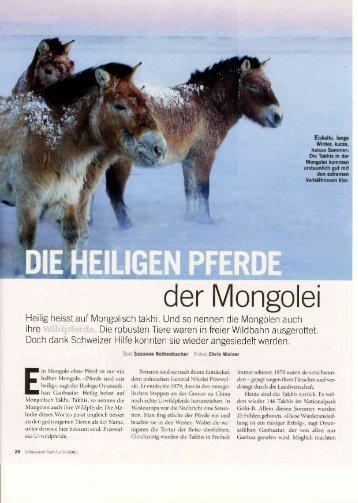 Die heiligen Pferde der Mongolei