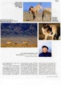 Die heiligen Pferde der Mongolei - Page 2