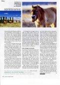 Die heiligen Pferde der Mongolei - Page 3