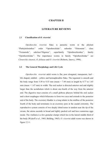 Historical literature review