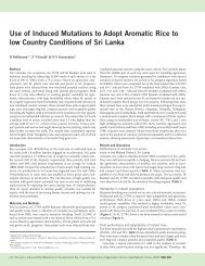 Use of Induced Mutations to Adopt Aromatic Rice to low Country ...