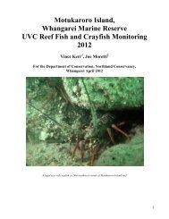 Motukaroro Island Whangarei Marine Reserve ... - MarineNZ.org.nz