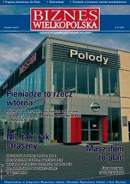 Pobierz PDF (52 strony - 14MB) - Biznes Wielkopolska