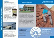 Kein Risiko bei Dacharbeiten (Flyer) - SVLFG