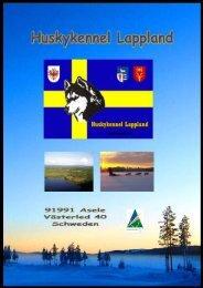 Huskykennel Lappland - GetWet - Outdoor Adventures
