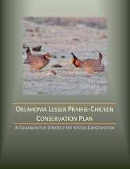 Oklahoma Lesser Prairie Chicken Conservation Plan available in