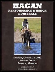 performance & ranch horse sale - Hagan Performance and Ranch ...