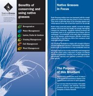 Benefits of Conserving and Using Native Grasses (pdf