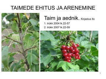 TAIMEDE EHITUS JA ARENEMINE Taim ja aednik. Kirjastus Ilo