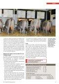 CHbraunvieh 03-2013 [8.52 MB] - Schweizer Braunviehzuchtverband - Page 5