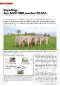 CHbraunvieh 03-2013 [8.52 MB] - Schweizer Braunviehzuchtverband - Page 6