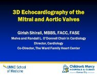 3D Echocardiography of the Mitral and Aortic Valves