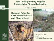 Test Driving the Bay Program Protocols for Stream Restoration ...