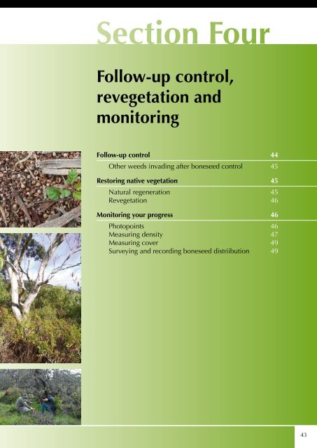 Follow-up control, revegetation and monitoring - Weeds Australia