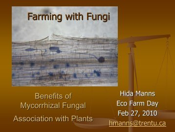 Farming with fungi instead of fertilizer - Canadian Organic Growers
