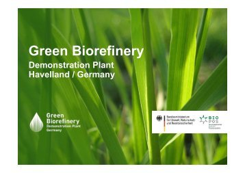 12. Kamm Green Biorefinery
