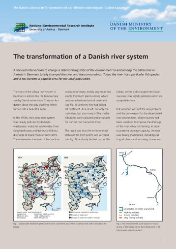 The transformation of a Danish river system - Ecoinnovation