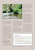 The transformation of a Danish river system - Ecoinnovation - Page 2