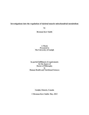 Investigations into the regulation of skeletal muscle ... - Atrium