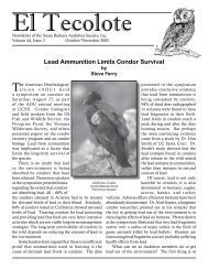 Lead Ammunition Limits Condor Survival - National Audubon Society